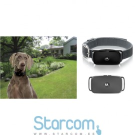 Motorola BARK200U , A shock-free no-bark collar , Black